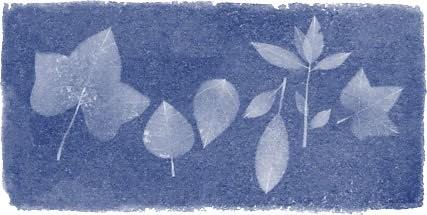 #Doodle do #Google de hoje: Anna Atkins 216th Birthday http://ift.tt/1AGtNg6