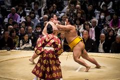Sumo in Osaka-30 (Rodrigo Ramirez Photography) Tags: japan amazing traditional professional tournament osaka sumo yokozuna ozeki makuuchi hakuho sumotori sumotournament maegashira reikishi harumafuji topdivision