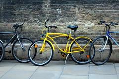 Cambridge (esemehache) Tags: canon canon1200d cambridge england bicycle bike yellow