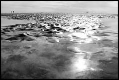 """I know what you did last summer"" (Nikoslillos) Tags: mer eau horizon sable ciel vagues ocan flandre opale"