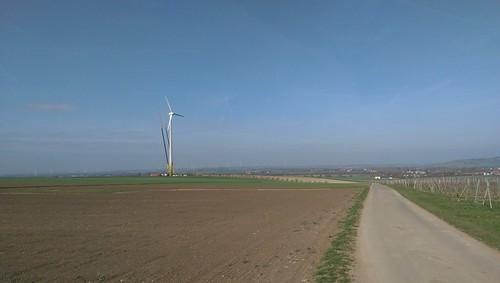 Windräder bei Selzen