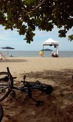 Volta Vero.. (Bruna cs) Tags: trip brazil praia beach sc bike brasil march mar felicidade happiness bicicleta paisagem viagem carnaval cs leisure santacatarina arvore lazer piarras rol brunacs