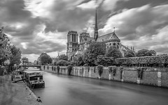 Notre-Dame (aurlien.leroch) Tags: europe france paris longexposure nikon d7100 nd1000 cityscape notredame cathdrale noiretblanc blackandwhite seine