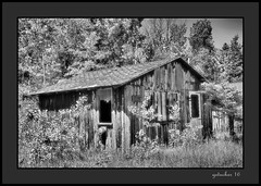 Ruins For Rent (the Gallopping Geezer 3.7 million + views....) Tags: cabin cottage forrent closed vacant abandoned decay decayed worn faded derelict m2 upperpeninsula gone lakemichigan greatlakes canon 5d3 tamron 28300 geezer