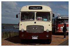 Bedford SB5 / Duple Midland / 1963 (Ruud Onos) Tags: bedford sb5 duple midland 1963 bedfordsb5duplemidland1963 be4068 nationale oldtimerdag lelystad nationaleoldtimerdaglelystad ruudonos oldtimerdaglelystad havhistorischeautomobielverenigingnederland