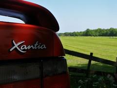 Citroën Xantia 2.0i 16V Activa (Skylark92) Tags: citroen xantia 20 activa red netherlands holland utrecht driebergenrijsenberg langbroek 20i 16v zfvn52 1996