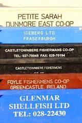 Petite Sarah (calzer) Tags: fish sarah east plastic boxes coop iceberg petite lossiemouth foyle dunmore castletownbere glenmar