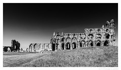 Brooding Whitby Abbey (don't count the pixels) Tags: yorkshire silverefexpro blackandwhite monochrome church abbey ruin arches