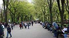 Central Park (joschibelami) Tags: vacation usa newyork centralpark manhatten 2016 japanday