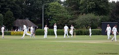 1360changingendsw (Liz Barber) Tags: cricket action wicket colour chichester stumps