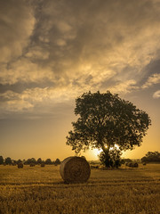 After the harvest (grbush) Tags: sunrise sun sunburst summer tree lonetree rural countryside england field harvest wheat farm farming northamptonshire nenevalley sonyslta77 sky clouds tokinaatx116prodxaf1116mmf28