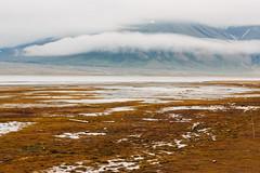 Arctic Tundra XII (danielfoster437) Tags: adventure arctic arcticcircle arcticsummer arctictundra extremeterrain landscape mountain nature outdoors spitsbergen summer svalbard svalbardsummer terrain tundra wilderness