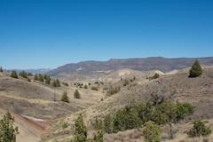 DSC_1879.jpg (da_martin) Tags: johnday oregon paintedhills fossilbed