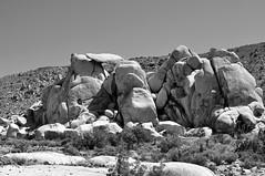 Joshua Tree National Park (Darren Shannon) Tags: sky 50mm nationalpark sand rocks desert brush joshuatreenationalpark nikond90 darrenshannon march282015
