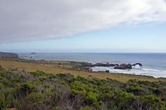 2012-06-18 06-30 Kalifornien, Big Sur bis San Diego 064 Big Sur