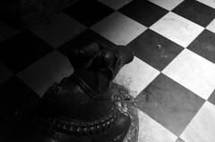 Black bull - Nandi (prognyaghosh) Tags: india black temple check faith bull shiva