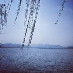 #earth #world #place #china #cn #hangzhou #杭州 #西湖 #xihu #westlake #green #willow #tree #spring #warm #holiday #relax #walking #sunshine #silence #history #hill #breeze #weather #street #day #afternoon #travel #fun #iphone (CalvinShoot) Tags: world china city travel trees mountain holiday plant tree green history love tourism nature sunshine walking square relax outdoors leaf spring warm afternoon photographer silent view place wind earth hill breath memories scene spot lookup westlake willow silence squareformat memory hangzhou hudson breathe breeze 西湖 杭州 xihu photographing iphone 浙江 iphoneography instagramapp uploaded:by=instagram