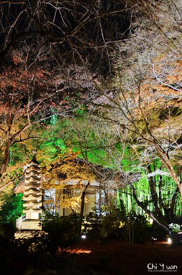 嵐山寶嚴12.jpg