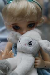 IMG_7387 (EilonwyG) Tags: bjd cp fairyland abjd ltf cerberusproject littlefee juri13
