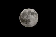 7/19/2016 (kimt15) Tags: moon lunar sky night fullmoon 7192016