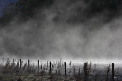 Just Cooking (Tones Corner) Tags: lindispass mist misty landscape outdoor nzscene