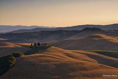 Morning light to the Crete Senesi (Agrippino Salerno) Tags: cretesenesi italy tuscany siena hills wheat morning light sunrise agrippinosalerno canon countryfarm countryside cypress trees sky colors