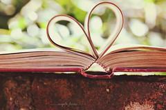 (angelafarina) Tags: livro luznatural amolivros amor corao