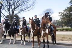 2015 St. Patrick's Day Parade in Washington DC (5) (smata2) Tags: canon washingtondc dc police parade usp stpatricksdayparade parkpolice nationscapital