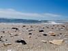 Quiet Sunday mornings (jill.marc) Tags: ocean shells beach sand nj og jerseyshore atlanticocean oceangrove oceangrovenj ogcma