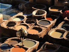 Fez -Traditional leather tannery (ustung) Tags: leather morocco fez maroc tannery maroccon