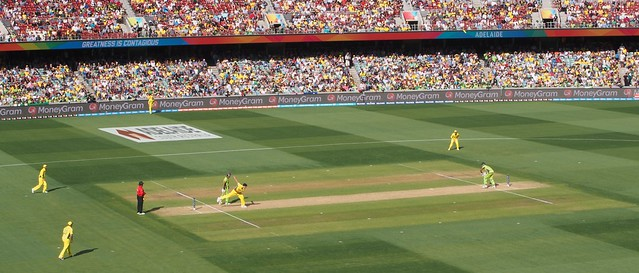 ICC World Cup quarter-final: Australia v Pakistan (4)