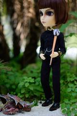 Off to see the wizard (twilitize) Tags: boy man doll dolls dragon witch wizard magic dragons pop pullip popular magical pullips warlock spells taeyang