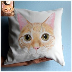 pillow jordan cat (ShebboDesign) Tags: cat gatos katze kedi crazycatlady catpillow catart catpainting catlover etsyfinds custompetportrait shebbodesign customcatportrait kedisever