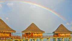 Rainbow Hotel KIAORA Tahiti Rangiroa (sapphire_rouge) Tags: france kiaora lagoon resort atoll tahiti rangiroa polynesia snorkeling  franchpolynesia    atool polynsiefranaise  island