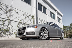 Audi - A4  - VFS1 - Silver Polished 1007_ (VossenWheels) Tags: a4 audi rs4wheels audiwheels audia4wheels s4wheels vfs1 audirs4wheels silverpolished audis4wheels a4wheels audirs4aftermarketwheels audiaftermarketwheels audis4aftermarketwheels audia4aftermarketwheels