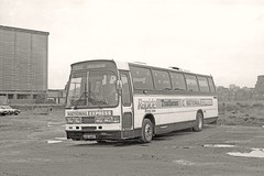 Rare Bird (Lost-Albion) Tags: london nbc pentax 1984 battersea nationalexpress 2353 duple dennisfalconv aod646y westernnatational