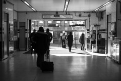 take me out (dziubas87) Tags: morning travel people london station blackwhite nikon tube rush