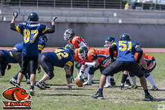 LNFA '14-15 Wildcats 26 Jabatos 7