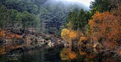 (186/16) El lago de los espejos IV (Pablo Arias) Tags: pabloarias espaa spain hdr photomatix nx2 photoshop nubes texturas elvalledeltietar lago otoo vegetacin laadrada avila comunidadcastillalen