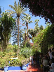 Marrakesh Majorelle_9916 (JespervdBerg) Tags: holiday spring 2016 africa northafrican tamazight amazigh arab arabic moroccanstyle moroccan morocco maroc marocain marokkaans marokko marrakech marrakesh majorelle