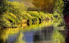 - m e r i g g i - (swaily  Claudio Parente) Tags: nature nikon fiume natura acqua luce abruzzo fucino nikond300 claudioparente swaily