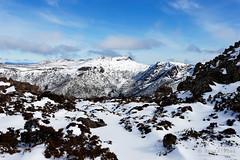 20160807-24-Florentine Peak in snow from Rodway Range (Roger T Wong) Tags: australia florentinepeak mtfield mtfieldnationalpark np nationalpark sel1635z sony1635 sonya7ii sonyalpha7ii sonyfe1635mmf4zaosscarlzeissvariotessart sonyilce7m2 tasmania bushwalk hike outdoors snow tramp trek walk winter