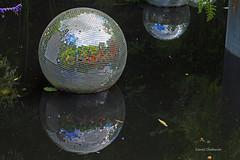 Reflets de choses mouilles (PACHA23) Tags: reflets