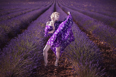 Lady Purple (pasotraspaso. Jesus Solana Fine Art Photography) Tags: lady fineart purple impressedbeauty beauty lavender infinitum infinito belleza chica rubia blonde lavanda violeta lila