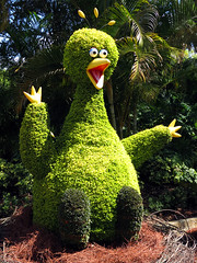 Big Bird Topiary (meeko_) Tags: big bird bigbird muppet sesamestreet topiary birdgardens busch gardens tampa africa buschgardens buschgardenstampa buschgardenstampabay buschgardensafrica themepark food wine festival foodandwinefestival corksandcoasters