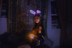 hibrido. (Prpura adrift.) Tags: bear conejo neon purpura luces velas lights night