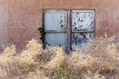 Floral window (KClarkPhotography) Tags: new mexico travel backroads southwest carrizozo window