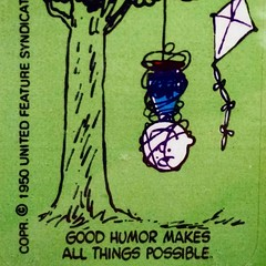 The good humor man. #charliebrown #peanuts #humor #possible #kite #philosophy #collectpeanuts #snoopygrams #vintagepeanuts #ilovesnoopy #snoopyfan (collectpeanuts) Tags: collectpeanuts snoopy peanuts charlie brown