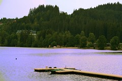 titisee (laura.foto) Tags: germany deutschland titisee lake forest schwarzwald forestanera