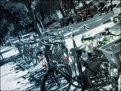 bicycle.row (C.Kalk DigitaLPhotoS) Tags: fahrrad bycicle reihe linie row line strasse street auto car